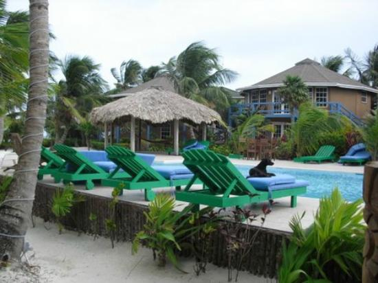 White Sands Cove Resort: Pool