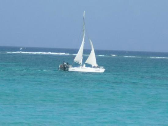 White Sands Cove Resort: Sailing the reef