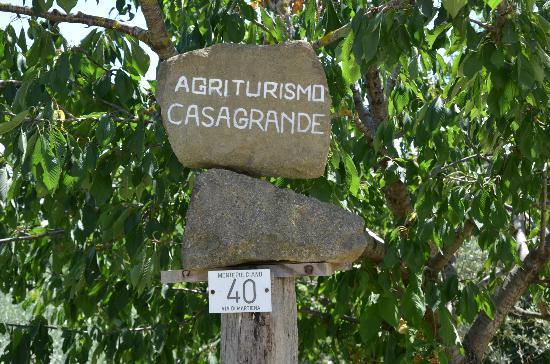 Agriturismo Casagrande照片