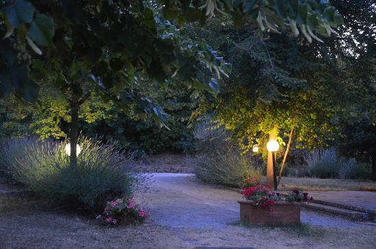 Agriturismo Casagrande: garden