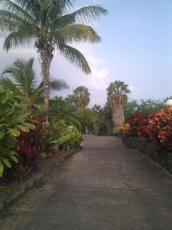 Luana Inn: Driveway