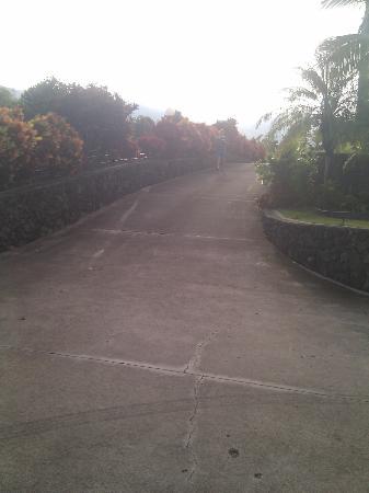 Luana Inn: More driveway