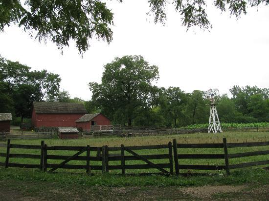 Spring Valley: The farm, windmill and planting area