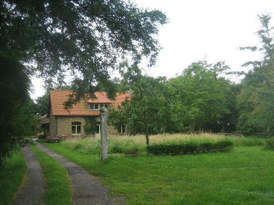 B&B Esenkasteelhoeve: Zufahrt - Blick auf's Gelände