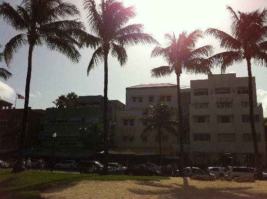 Casa Grande Suite Hotel of South Beach: wish you were here