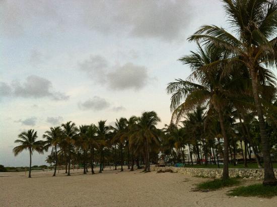 Casa Grande Suite Hotel of South Beach: scenic walks