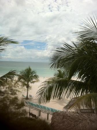 Cedar Cove Resort & Cottages: Palms Penthouse View