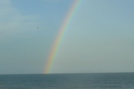 Amelia Oceanfront Bed & Breakfast: Great rainbow after short storm