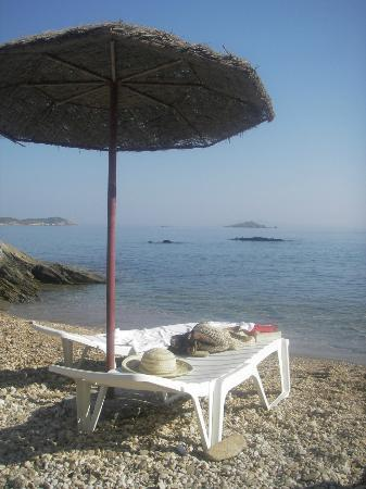 Andros Holiday Hotel: Private beach