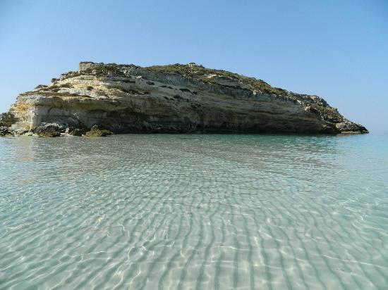 Isola Dei Conigli Foto Di Spiaggia Dei Conigli Lampedusa