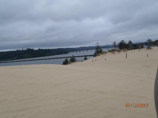 Dune Bugs ATV Tours: Ocean view