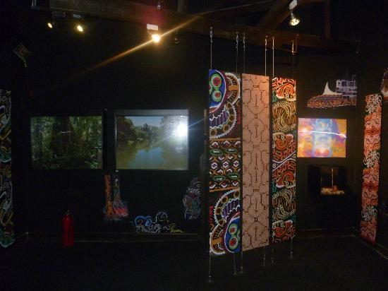 Museo de Plantas Sagradas, Magicas y Medicinales: sala ayahuasca