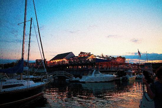 Michael's Harborside: From the docks