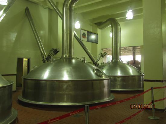 Anheuser-Busch Brewery Tours: Fermenation