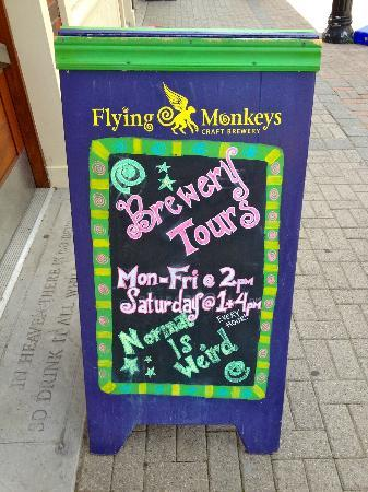 Barrie, Canada: Flying Monkey Tours