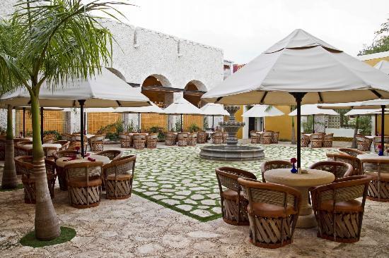 Meilleur Restaurant Du Yucatan