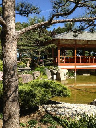giardino zen - Foto di Japanese Gardens, Monte-Carlo - TripAdvisor