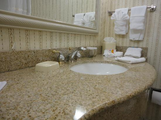 Hilton Garden Inn Milwaukee Park Place: Clean Bathroom