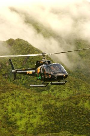 'Makani Kai Helicopters' from the web at 'https://media-cdn.tripadvisor.com/media/photo-s/02/b3/76/b3/makani-kai-helicopters.jpg'