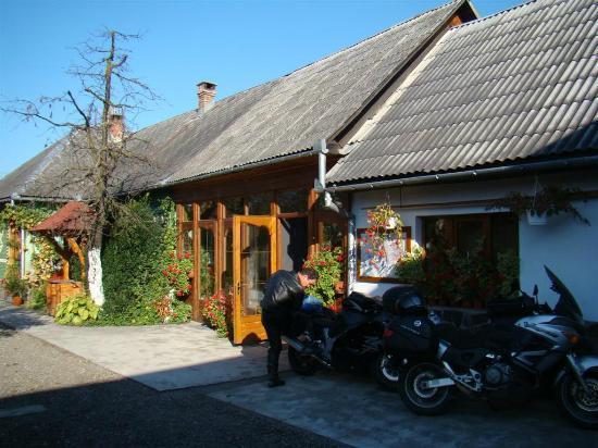 Guesthouse Ileana: Εξωτερικός χώρος (χώρος πάρκινγκ)