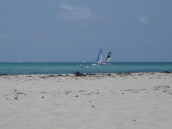 Sirena Beach : Hermoso!!!