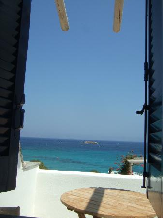 Blue Dolphin: View from my patio