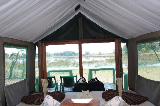 Kwara Camp - Kwando Safaris: view from our tent