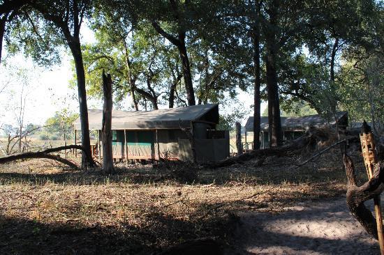 写真Kwara Camp - Kwando Safaris枚