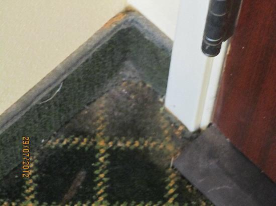 Fairfield Inn Erie Millcreek Mall: Filthy carpet inside doorway to hall