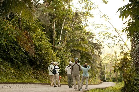 Belcampo Lodge: Explore Belize through our endless adventures: birding, hiking, and more!