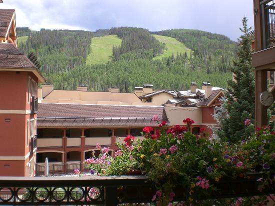 Montaneros Condominiums : Our view of the mountain!