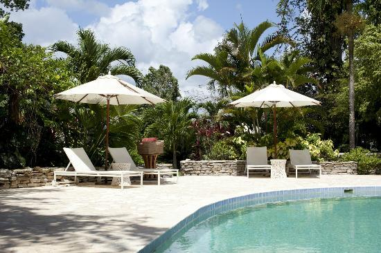 Belcampo Lodge: When you're not embarking on an adventure, relax by our pool.