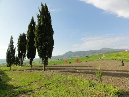 Agriturismo I Savelli:  vue