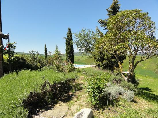 Agriturismo I Savelli:  jardin