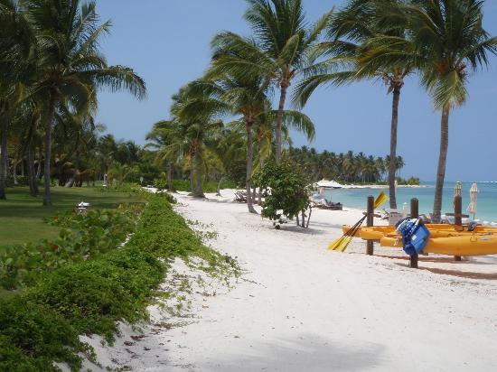 Tortuga Bay Hotel Puntacana Resort & Club : Private Beach