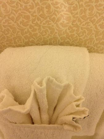 "Best Western Pentagon Hotel - Reagan Airport: Nasty long black hair folded into the ""clean"" towels!"