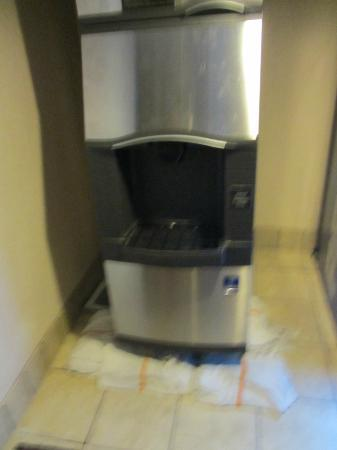 Whiskey Pete's Hotel & Casino: Ice machine that I was unable to get ice out of.
