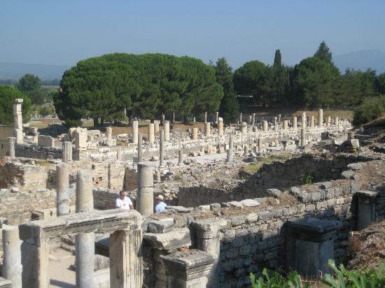 Sarcophagi - Picture of Ephesus Museum, Selcuk - TripAdvisor