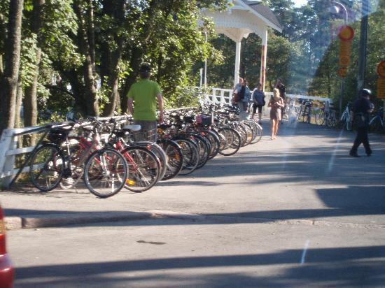 Paulo's Tours: No bicycles allowed on the island