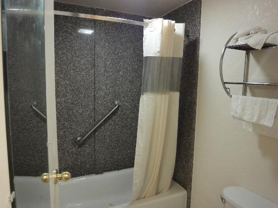 Baymont Inn and Suites Tampa near Busch Gardens/USF: Baño