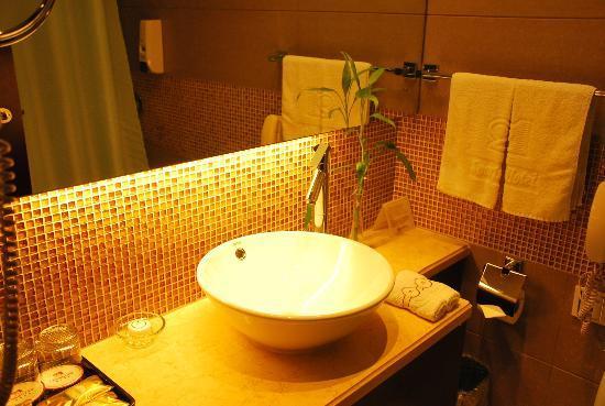Sports Hotel: bathroom