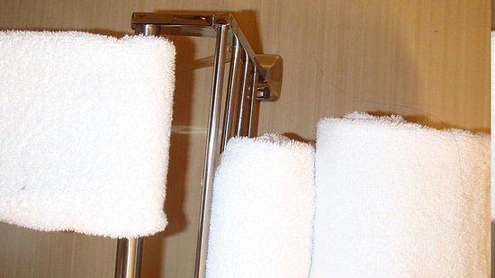 كومفورت سويتس ستيفنسون رانش: Hairs on towels.
