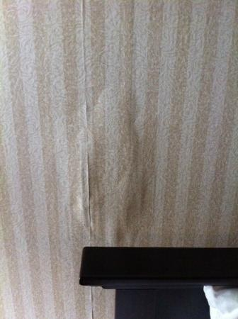 Comfort Inn & Suites: Bedroom wall