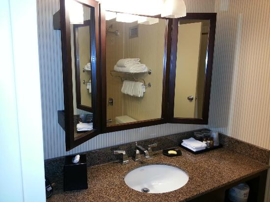 Sheraton Houston Brookhollow Hotel: Room 732 Bathroom