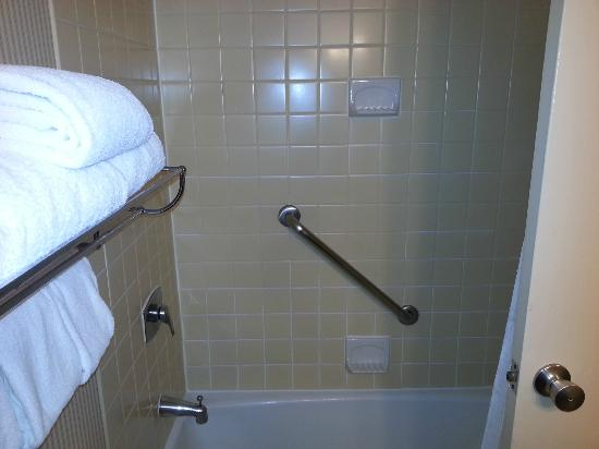 Sheraton Houston Brookhollow Hotel: Look at that perfectly clean grout!