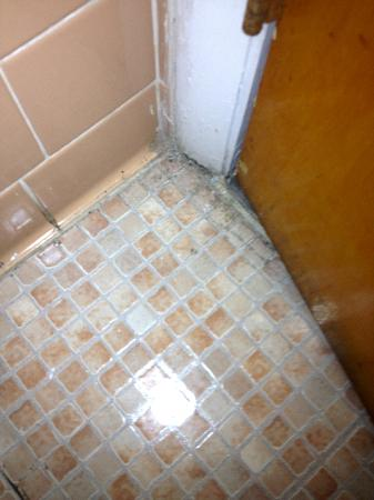 Waikiki Village: Bathroom floor-dirty