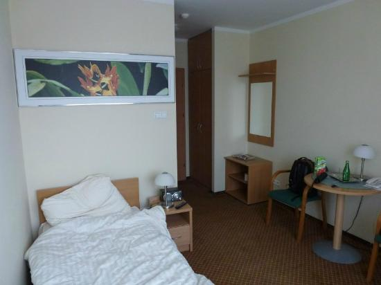 Hotel Hetman : single room