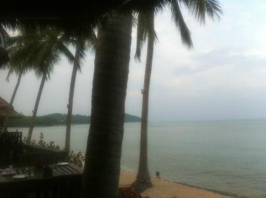 Nora Beach Resort and Spa: Neben der Bar