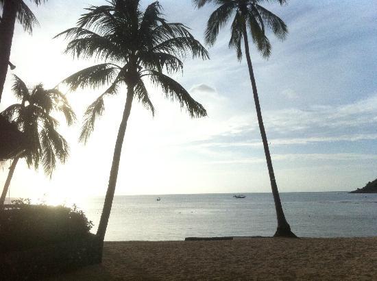 Nora Beach Resort and Spa: Links daneben befindet sich die Bar
