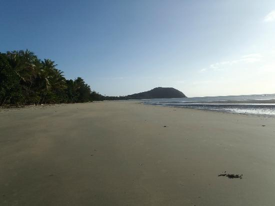 Cape Tribulation Camping: Beech Cape Trib